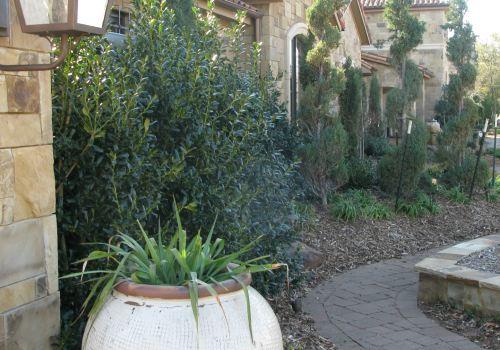 Elegant front yard landscaping